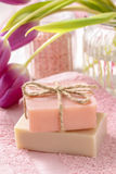 Two bars of natural handmade soap Stock Image