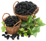 Two baskets with black mulberries and leaves Stock Photo