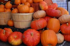 Two Baskets with Pumpkins. Two baskets with a variety of pumpkins in the St. Johns area of Portland, Oregon Stock Images