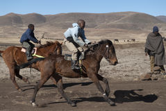 Two Basotho racing ponies. Horse Racing in Semonkong, Lesotho, July 17, 2010. Two racing Basotho ponies arrive at the winning post, represented by a man standing Royalty Free Stock Photos