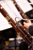 Two bassoon in the orchestra Royalty Free Stock Image