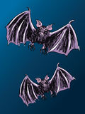 Two Bats Royalty Free Stock Images