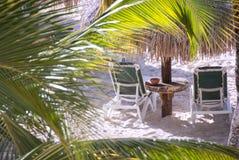 Two Beach Chairs Through the Trees Stock Photos
