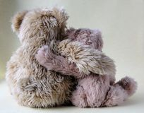 Two bear buddies Stock Image