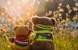 Two bear dolls in the sitting position at the garden , look like they are watching the dog. royalty free stock photo