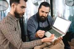 Two bearded men check quality of barley malt while in brewery. Process of beer manufacturing. Brewing. Brewery. Beer crafting Royalty Free Stock Photography