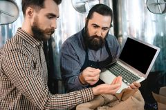 Two bearded men check quality of barley malt while in brewery. Process of beer manufacturing. Brewing. Brewery. Beer crafting Royalty Free Stock Photos