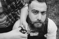 Two bearded men shave Stock Images