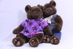 Two bears. Photo of two brown bears dressed as male and female in loving pose Stock Photography