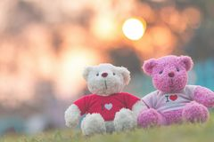 Two bears doll sitting together, Valentine`s day and love concept Royalty Free Stock Photography