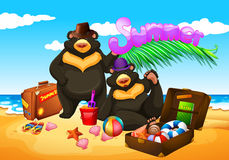Two bears enjoy summer on the beach Stock Photo