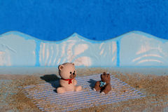 Two bears  sitting on wooden deck on beach Royalty Free Stock Photos