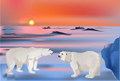 Two bears in snow landscape Stock Photography