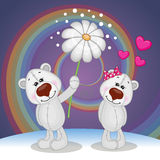 Two Bears Stock Photo