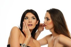 Two beauties Royalty Free Stock Photography