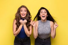 Two admired women screaming in surprise on yellow background. Two beautiful admired women screaming in surprise or delight, on yellow background royalty free stock image