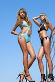 Two beautiful bikini model Royalty Free Stock Photography