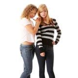 Two beautiful blond teen girlfriends Stock Photos