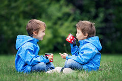 Two beautiful boys, brothers, sitting on a lawn, autumn time, dr Royalty Free Stock Images