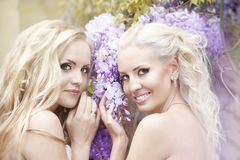 Two beautiful bride in the garden Royalty Free Stock Images