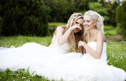 Two beautiful bride in the garden Stock Images