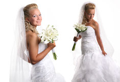 Two beautiful brides Royalty Free Stock Photos