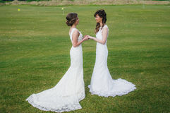 Two beautiful brides holding hands on the green field royalty free stock image