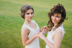 Two beautiful brides holding hands on the green field royalty free stock images
