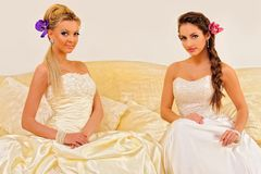 Two beautiful brides in a wedding dresses. Stock Images