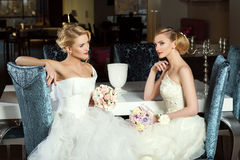 Two beautiful brides Stock Images