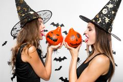 Two beautiful brunette girls in black witch hats hold halloween pumpkins in their hands and show their tongues stock photography