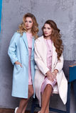 Two beautiful business woman lady style perfect body. Two beautiful business women lady style perfect body shape brunette hair wear blue white pink dress coat Stock Photos