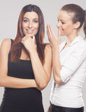 Two beautiful businesswoman discussing Stock Photography