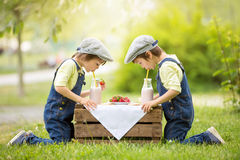 Two beautiful children, boy brothers, eating strawberries and co. Okies and drinking smoothie in the park in late sunny spring afternoon Royalty Free Stock Images