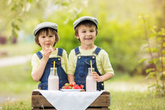 Two beautiful children, boy brothers, eating strawberries and co Stock Photography