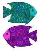 Two beautiful colorful hand drawn vector fishes Stock Photos