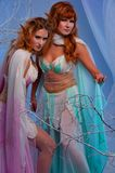 Two beautiful elf women in magical forest. Elves in magical winter forest Stock Images
