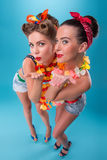 Two beautiful emotional girls in pinup style Stock Photos