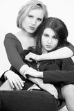 Two beautiful females Stock Images