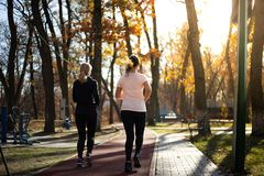 Two beautiful fit women running in parks during fall and suns stock photography
