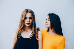 Two beautiful friends pose on white background Royalty Free Stock Photos