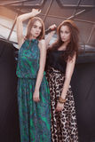 Two beautiful girl in long dress with long hair Stock Photos