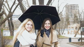 Two beautiful girlfriends blonde and brunette - talking standing under an umbrella. Sunny day, the wind blows. stock video