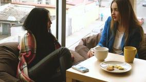 Two beautiful girlfriends talking stock video