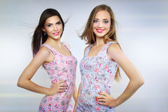 Two beautiful girls Stock Photography