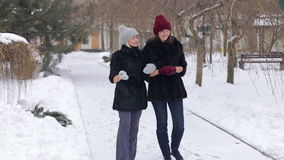 Two beautiful girls in black fur coat walk in the Park in winter. Wintertime stock video