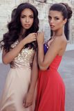 Two beautiful girls with dark hair in luxurious dresses Stock Image