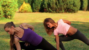 Two beautiful girls doing yoga stock video footage