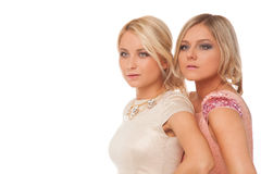 Two beautiful girls in fashion dresses isolated Royalty Free Stock Photography