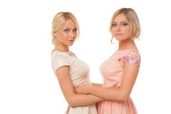 Two beautiful girls in fashion dresses isolated Stock Photo